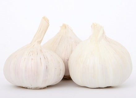 Garlic a powerful Immune Boosting herbs